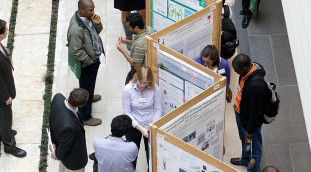 Humboldt fellows at a poster session